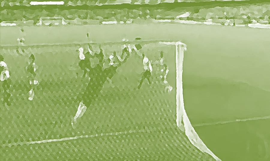 gol washington 2008 green